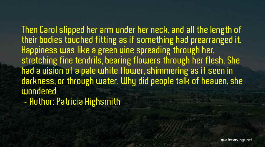 Water Bodies Quotes By Patricia Highsmith