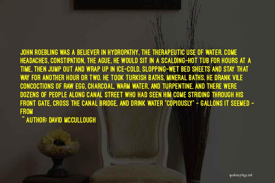 Water Canal Quotes By David McCullough