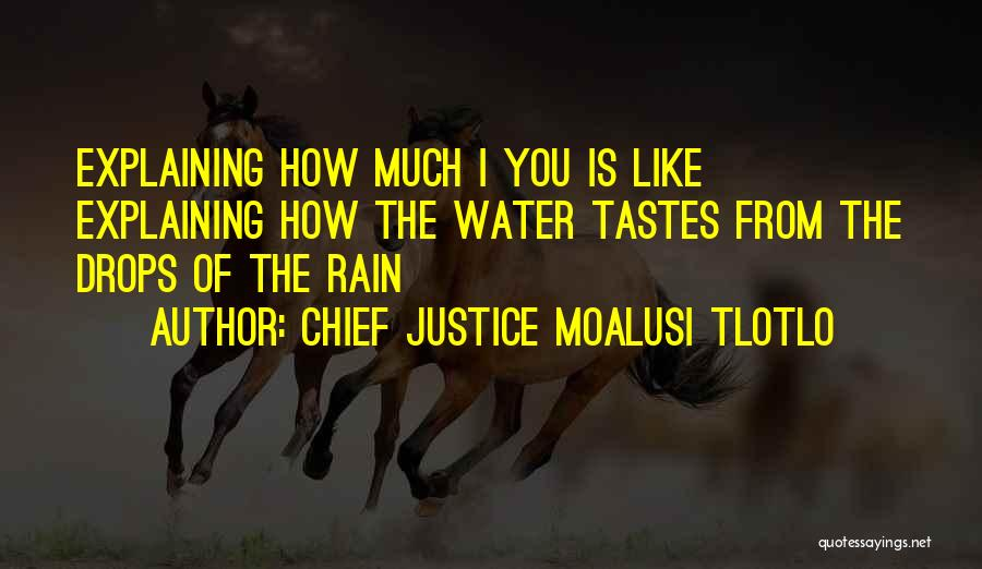 Water Drops Quotes By Chief Justice Moalusi Tlotlo