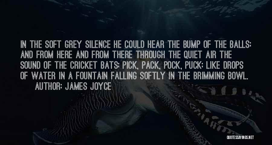 Water Drops Quotes By James Joyce