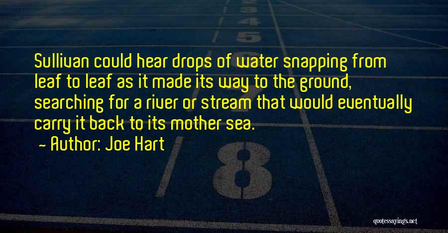 Water Drops Quotes By Joe Hart