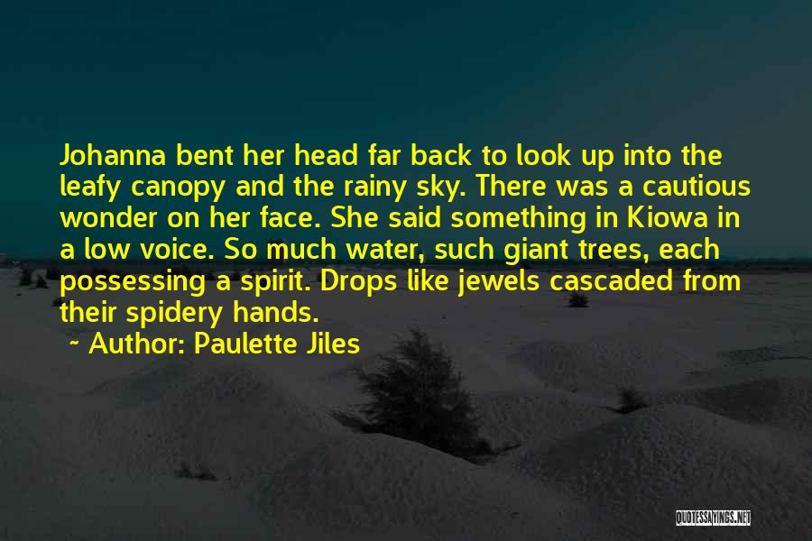 Water Drops Quotes By Paulette Jiles