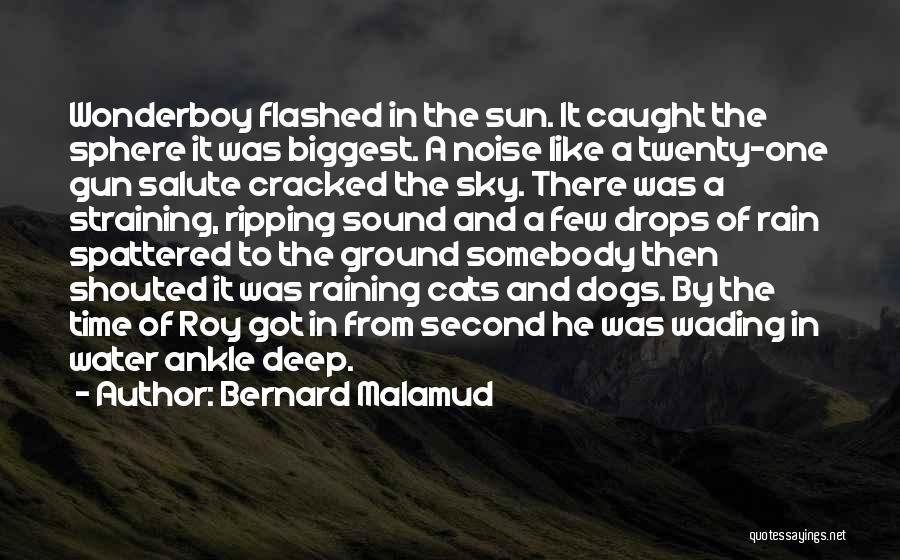 Water Gun Quotes By Bernard Malamud