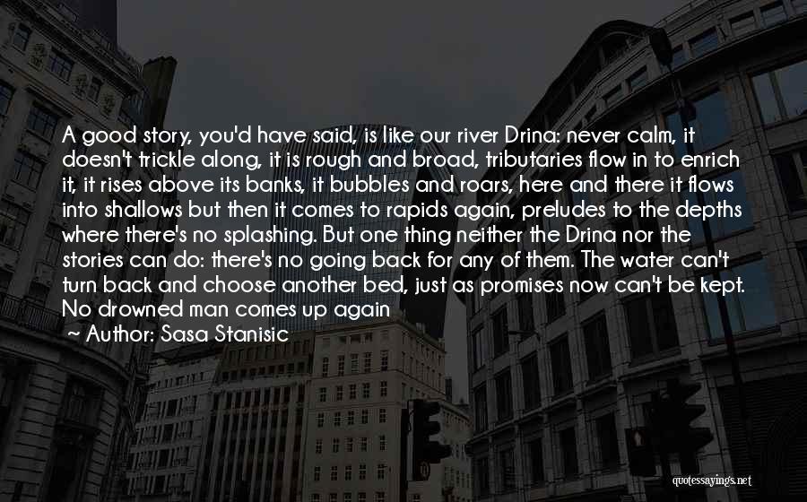 Water Gun Quotes By Sasa Stanisic