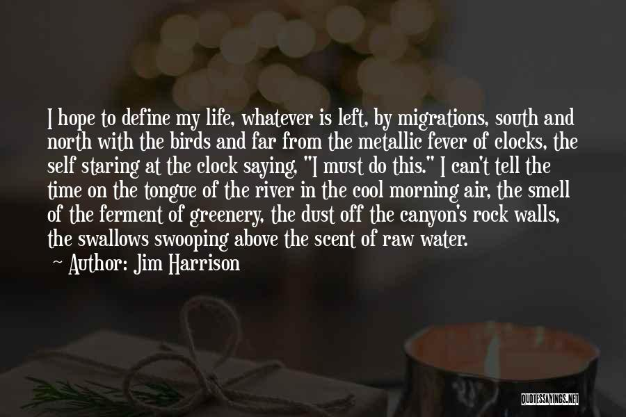 Water Is My Life Quotes By Jim Harrison