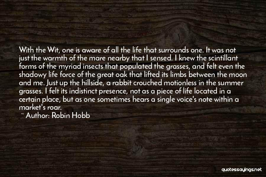 Water Is My Life Quotes By Robin Hobb