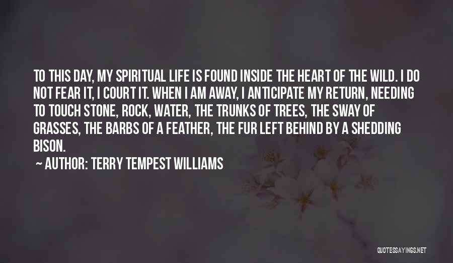 Water Is My Life Quotes By Terry Tempest Williams
