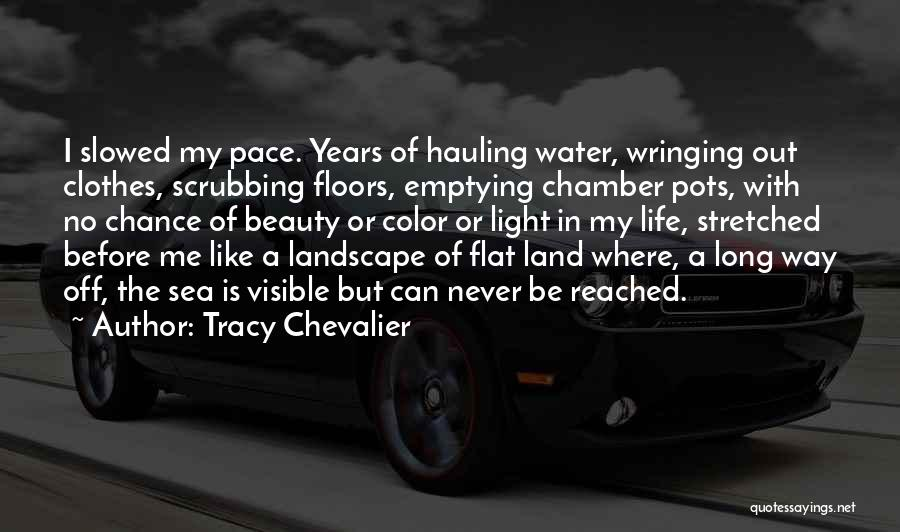 Water Is My Life Quotes By Tracy Chevalier