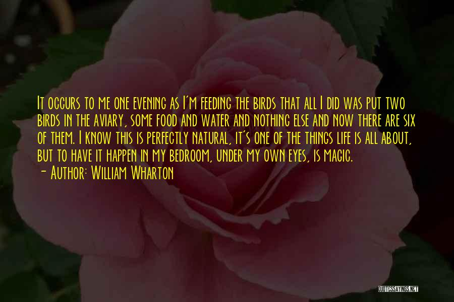 Water Is My Life Quotes By William Wharton