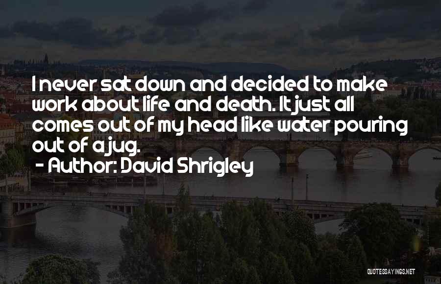 Water Jug Quotes By David Shrigley