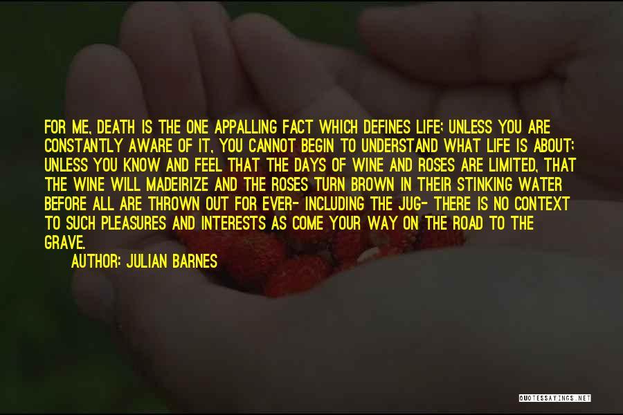 Water Jug Quotes By Julian Barnes