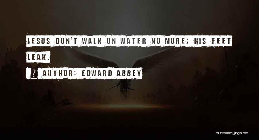 Water Leak Quotes By Edward Abbey