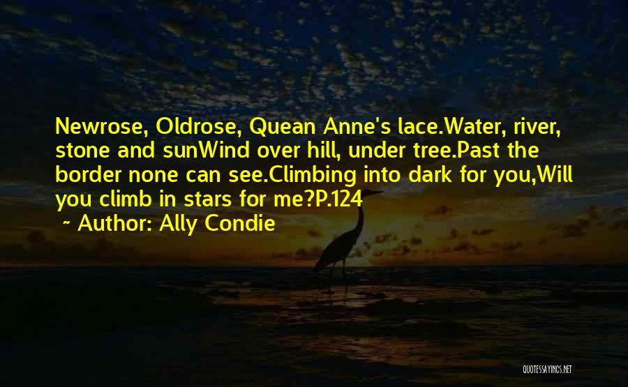 Water Stone Quotes By Ally Condie