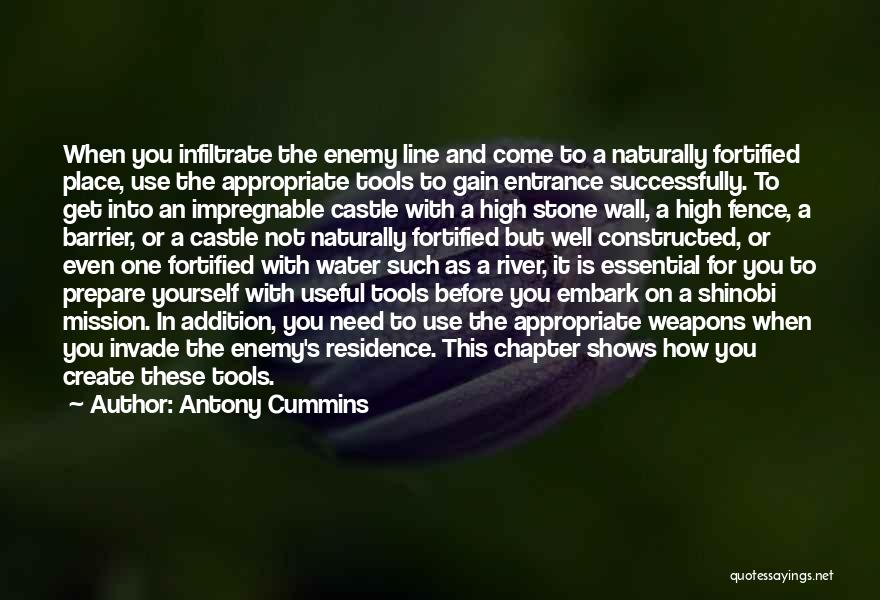 Water Stone Quotes By Antony Cummins