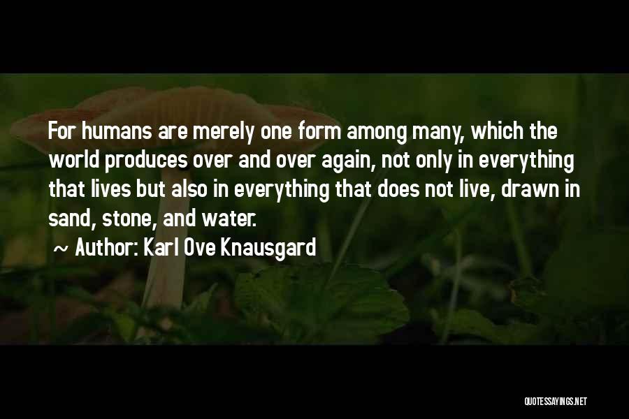 Water Stone Quotes By Karl Ove Knausgard
