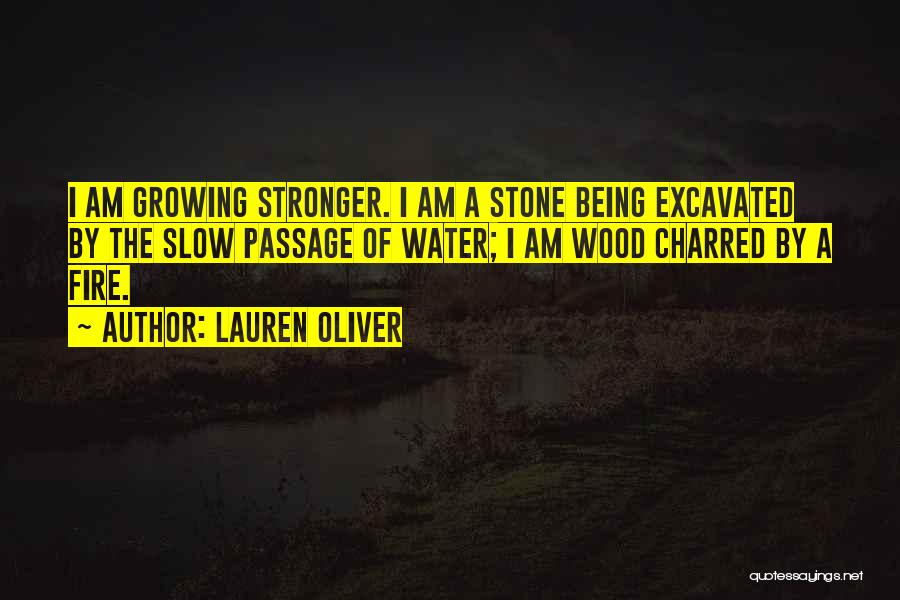 Water Stone Quotes By Lauren Oliver