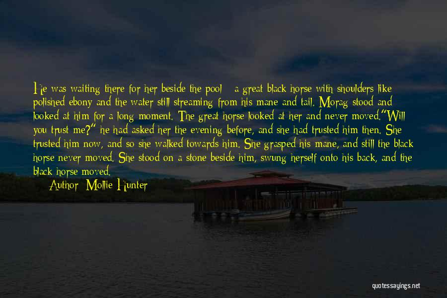 Water Stone Quotes By Mollie Hunter
