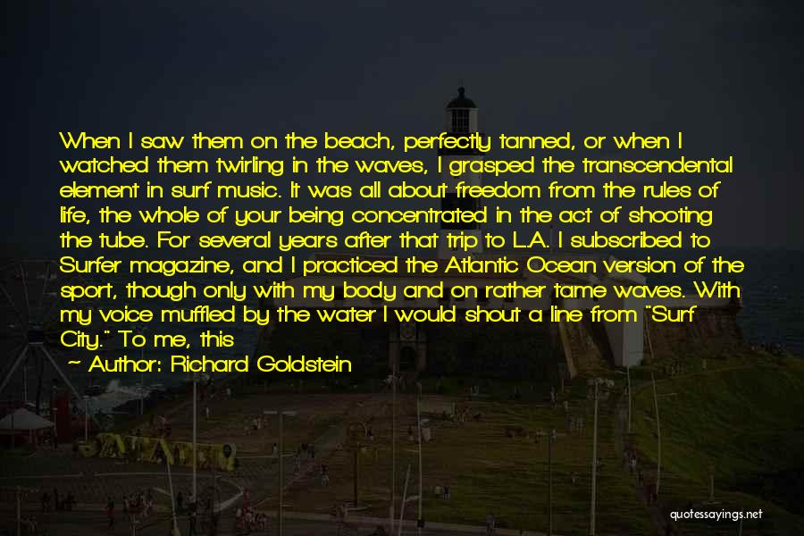 Water Tube Quotes By Richard Goldstein