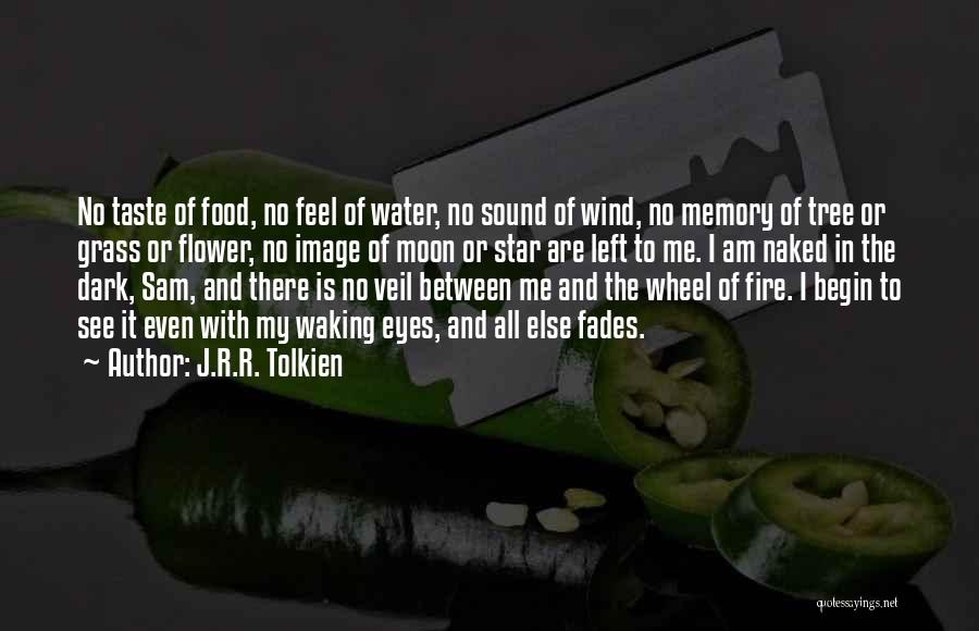 Water Wheel Quotes By J.R.R. Tolkien
