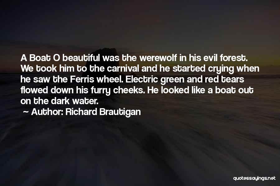 Water Wheel Quotes By Richard Brautigan