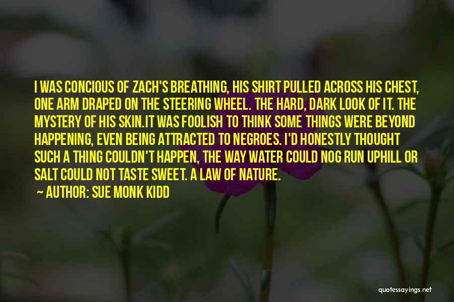 Water Wheel Quotes By Sue Monk Kidd