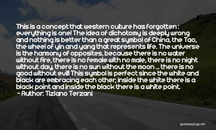 Water Wheel Quotes By Tiziano Terzani