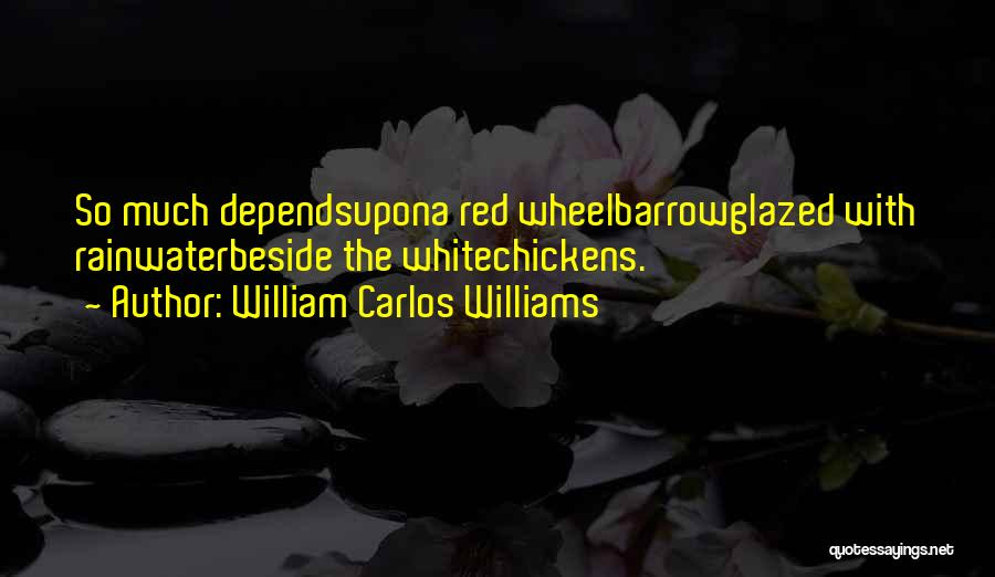 Water Wheel Quotes By William Carlos Williams