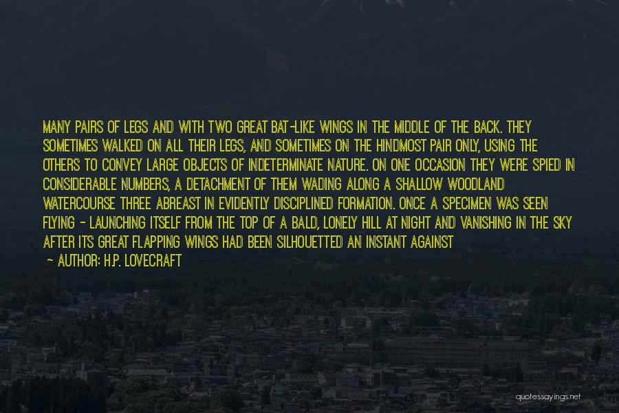 Watercourse Quotes By H.P. Lovecraft