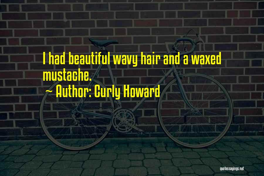 Wavy Quotes By Curly Howard