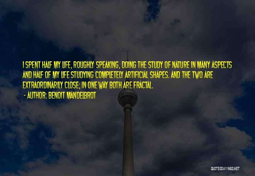 Way Of Speaking Quotes By Benoit Mandelbrot