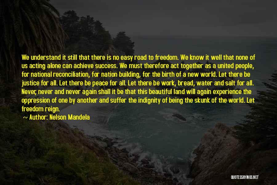 We Achieve Success Quotes By Nelson Mandela