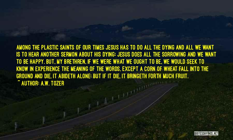 We All Die Alone Quotes By A.W. Tozer