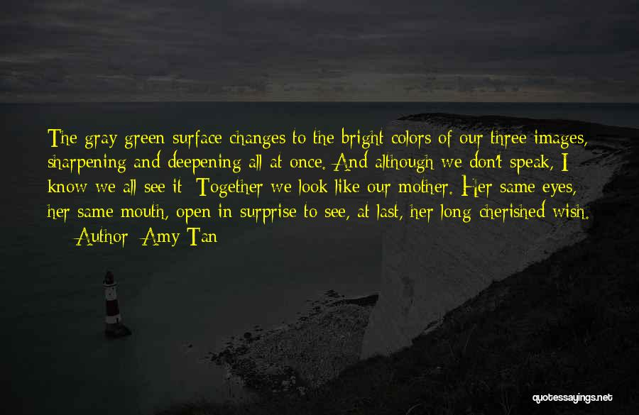 We All Look The Same Quotes By Amy Tan