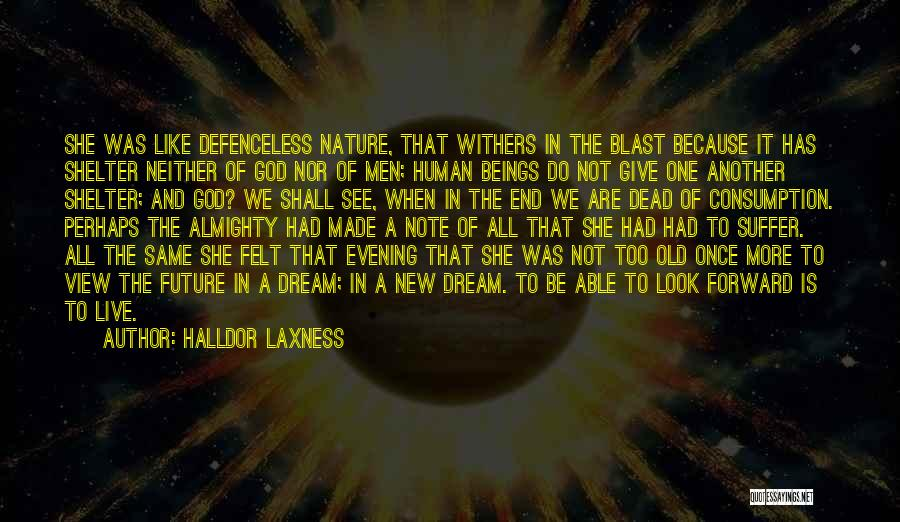 We All Look The Same Quotes By Halldor Laxness