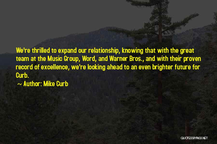 We Are A Team Relationship Quotes By Mike Curb