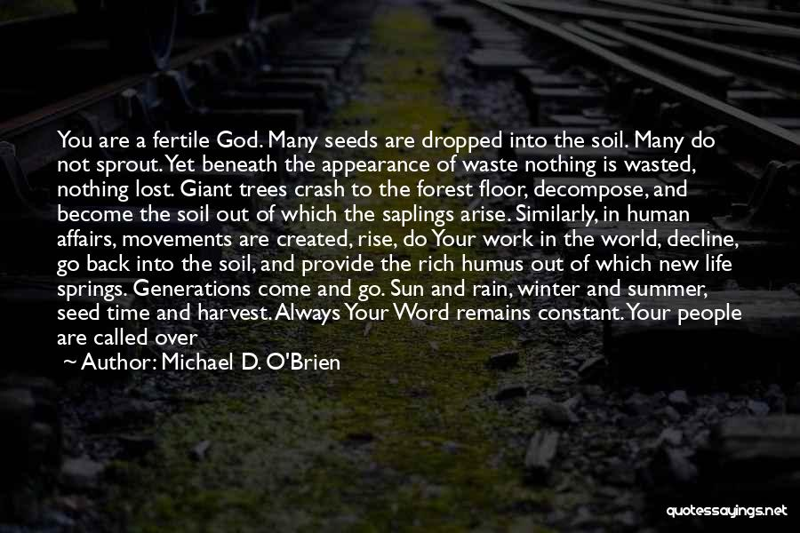 We Are Called To Rise Quotes By Michael D. O'Brien