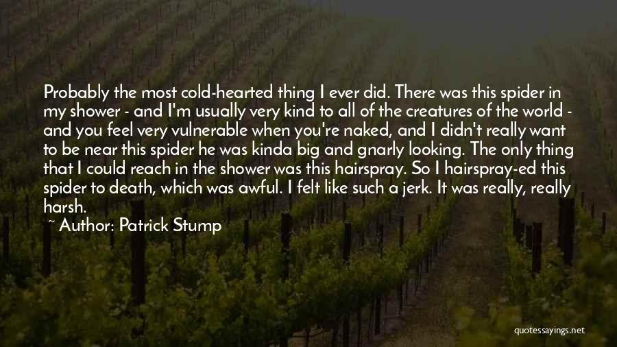 We Are Far But Near Quotes By Patrick Stump