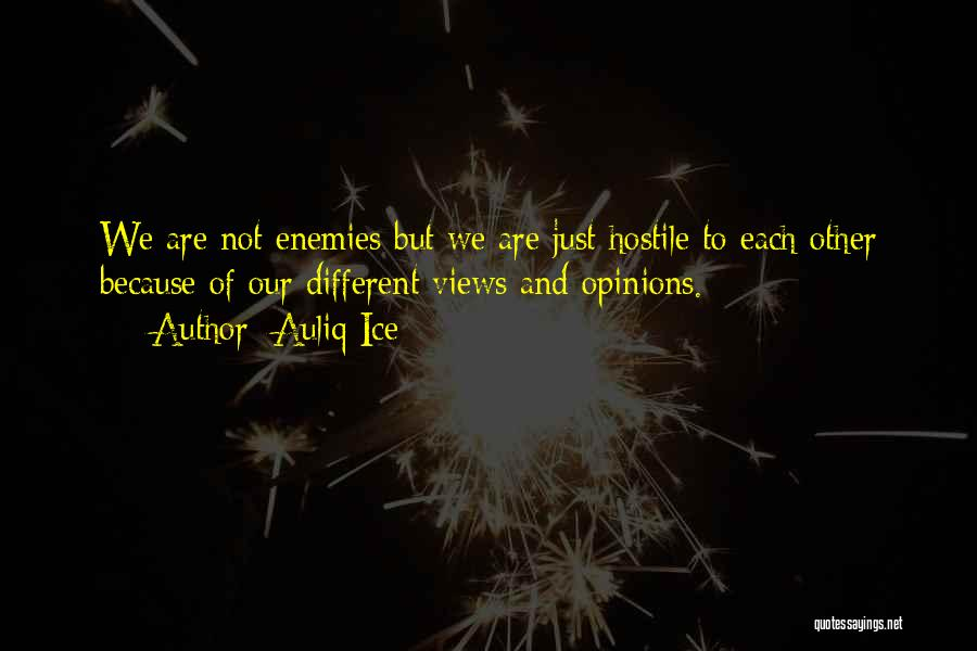 We Are Friends Because Quotes By Auliq Ice