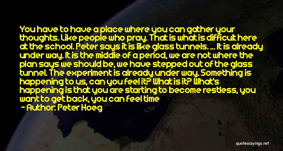 We Are Here To Learn Quotes By Peter Hoeg