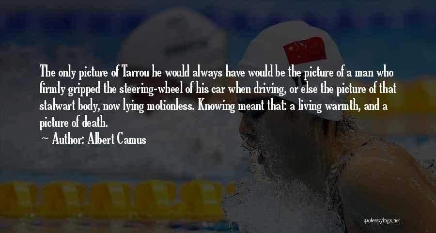 We Are Meant To Be Picture Quotes By Albert Camus