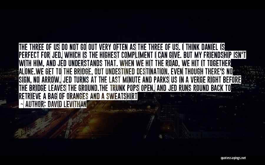 We Are Never Alone Quotes By David Levithan