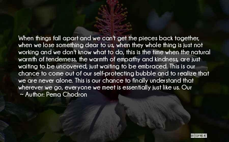 We Are Never Alone Quotes By Pema Chodron