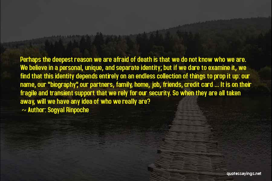 We Are Not Friends We Are Family Quotes By Sogyal Rinpoche