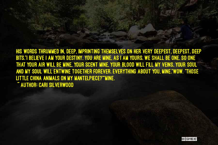 We Are Together Forever Quotes By Cari Silverwood