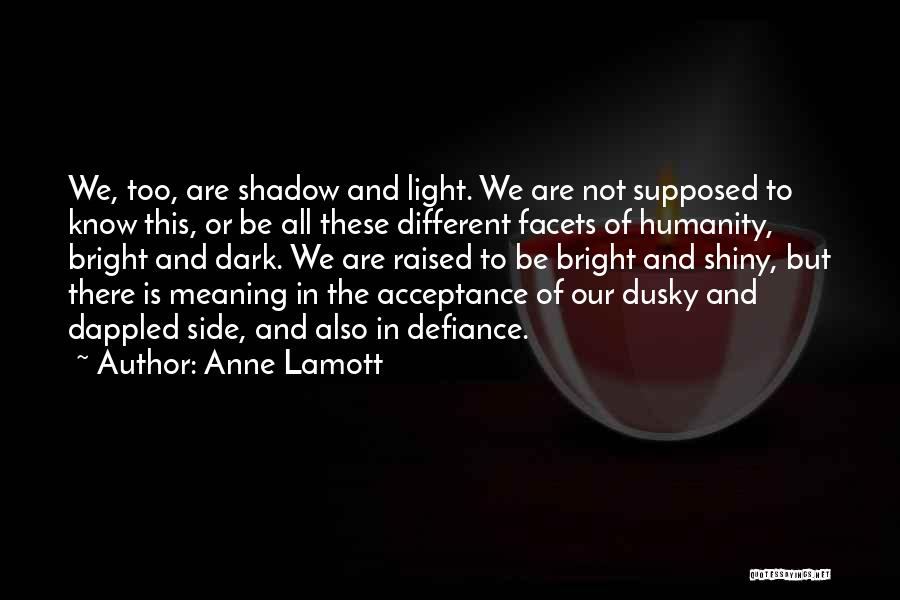 We Are Too Different Quotes By Anne Lamott