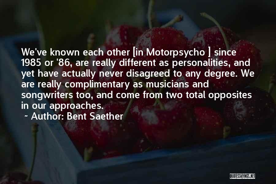 We Are Too Different Quotes By Bent Saether