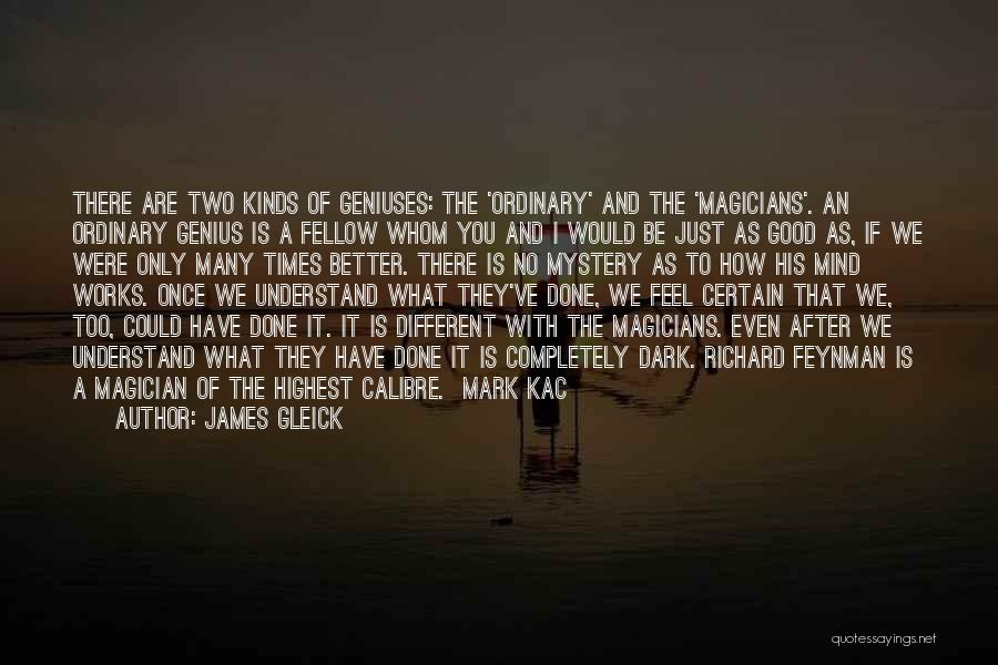 We Are Too Different Quotes By James Gleick