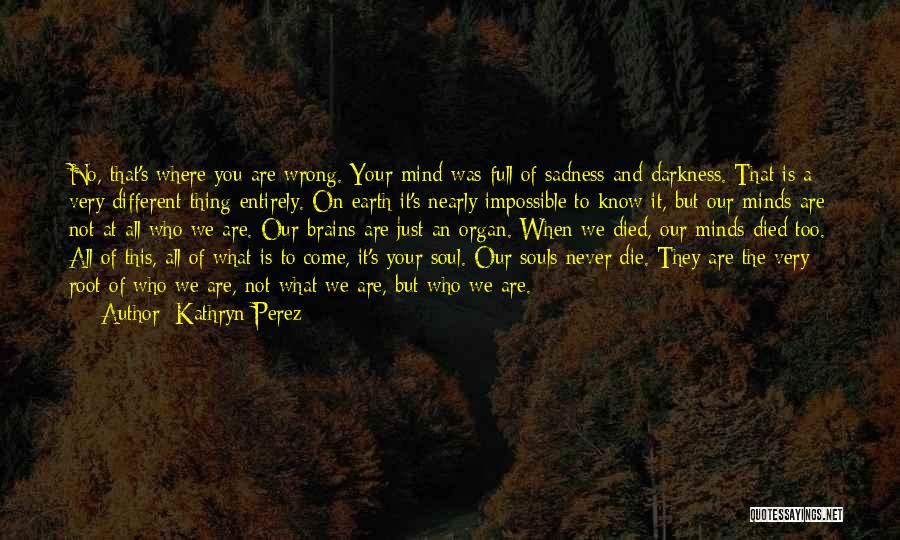 We Are Too Different Quotes By Kathryn Perez