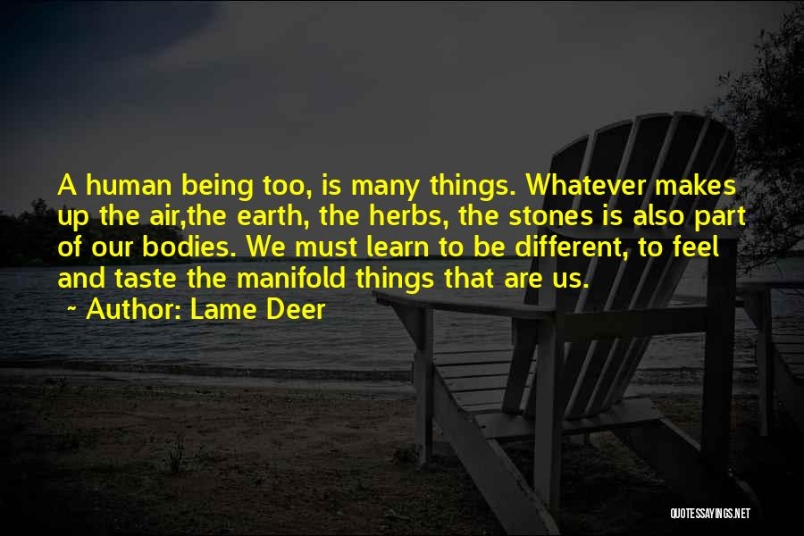 We Are Too Different Quotes By Lame Deer