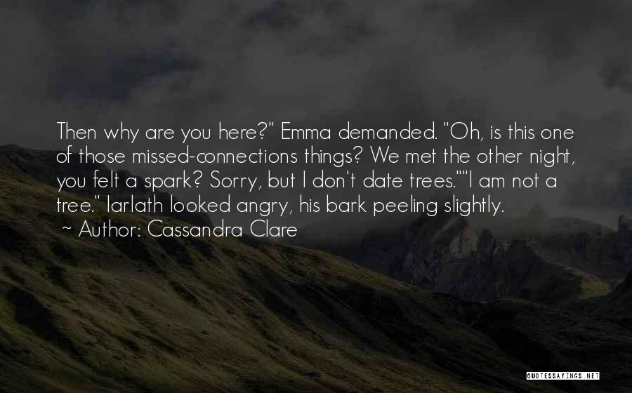 We Don't Date Quotes By Cassandra Clare